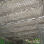 CANEX Fireproofing Project
